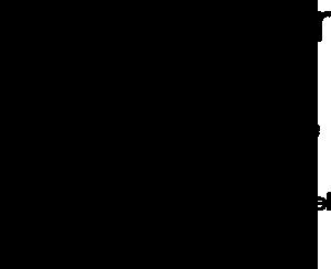 logo hébergeur sante