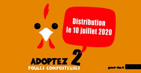 distribution poule composteuse 10 juillet