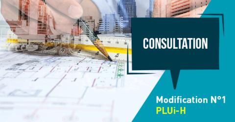 consultation pluih