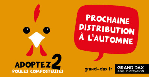 distribution poules